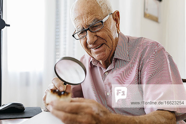 Retired elderly man examining minerals and fossils with magnifying glass while sitting at table