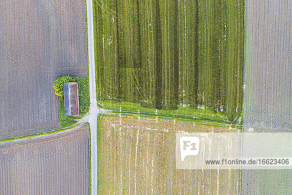 Drone view of dirt road stretching between countryside fields