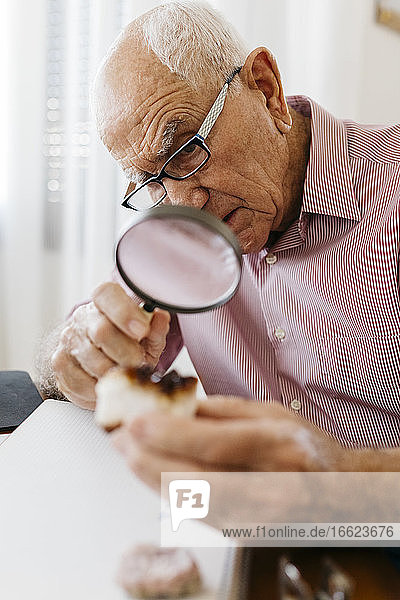 Elderly man examining minerals and fossils with magnifying glass while sitting at table