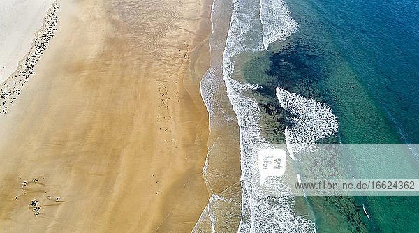 Aerial view of edge of sandy coastal beach