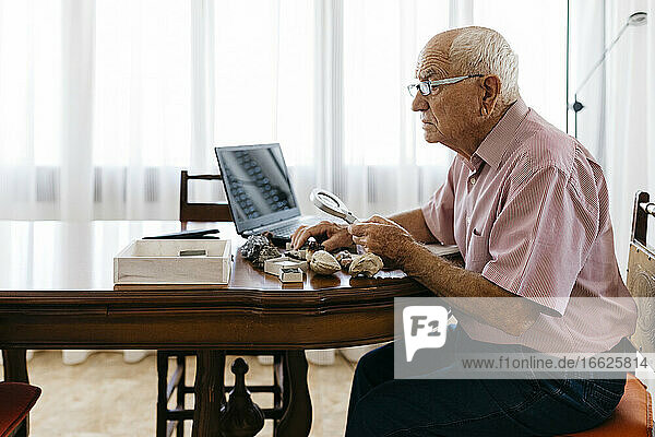 Retired senior man using magnifying glass for research of fossil and mineral at home