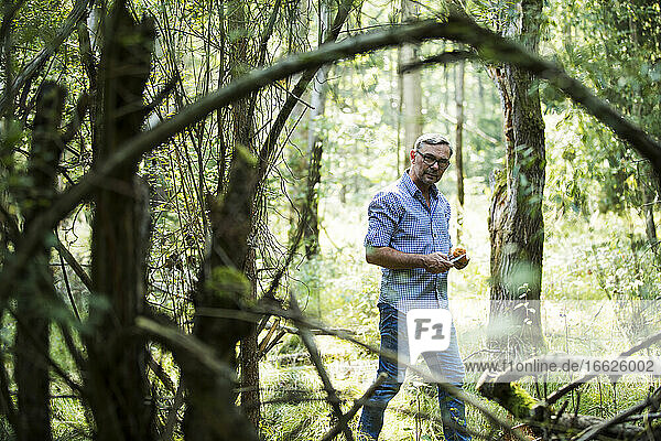 Mature man standing with mushroom in forest on sunny day