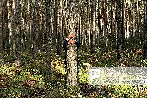 Reife Frau mit umarmendem Baumstamm im Wald im Herbst