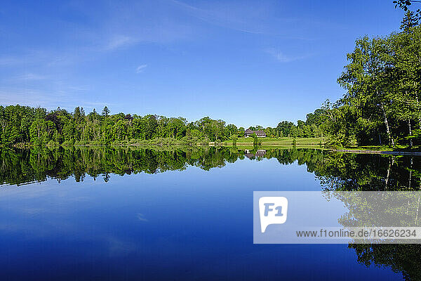 Scenic view of Haarseelake reflecting surrounding forest