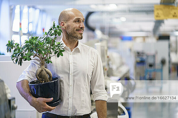 Smiling businessman holding potted plant while looking away at illuminated factory