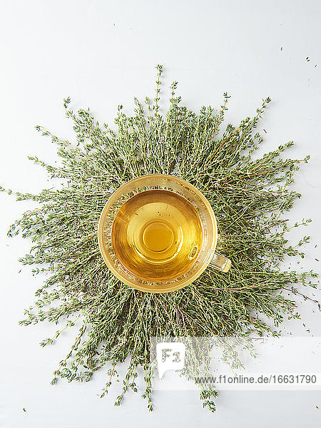 Thyme tea in a glass cup on fresh sprigs of thyme