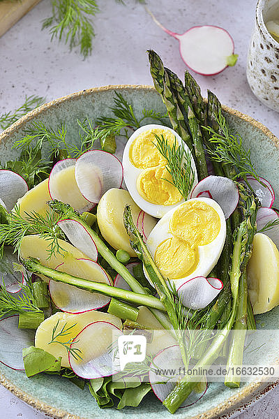 Spring salad with asparagus  eggs and radish