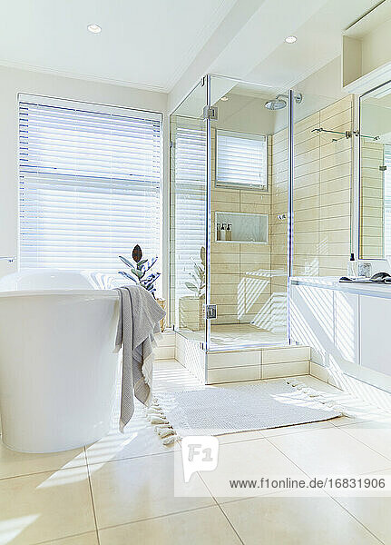 Modern sunny home showcase interior bathroom with soaking tub