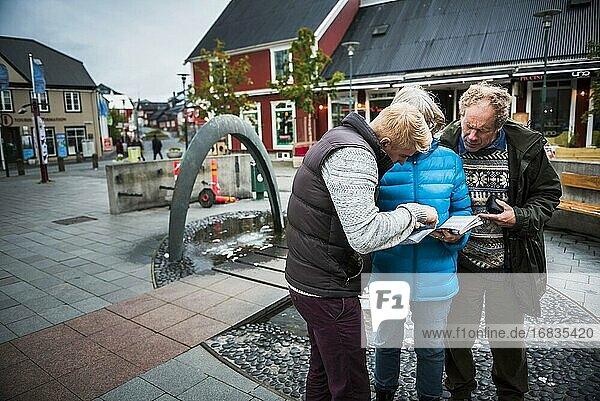 Familienausflüge in Reykjavik  Island