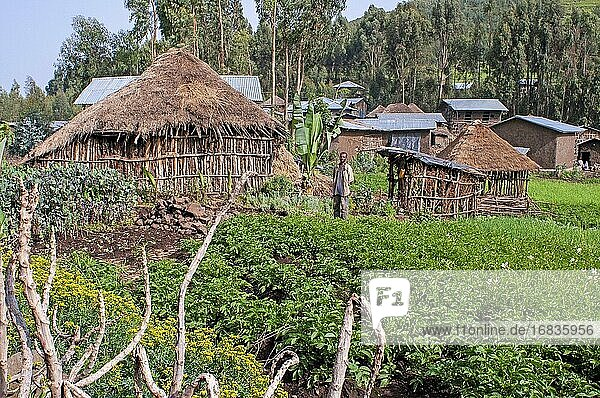Farmland and village houses in the mountain  Amhara Region  Ethiopia.