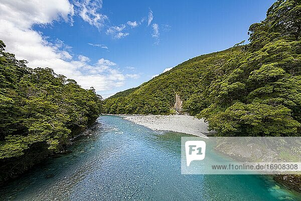 River  Makarora River  Blue Pools  turquoise crystal clear water  Haast Pass  West Coast  South Island  New Zealand  Oceania