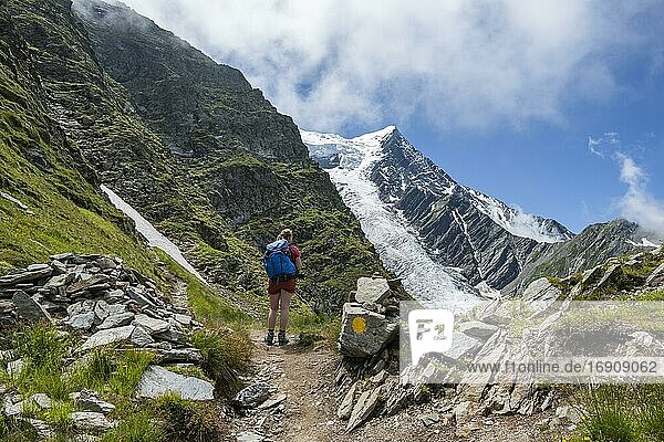 Hiker on hiking trail  hiking trail La Jonction  glacier Glacier de Taconnaz  summit of Aiguille de Bionnassay  right Mont Blanc  Chamonix  Haute-Savoie  France  Europe