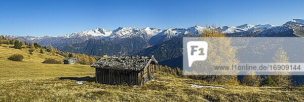 Autumnal mountain landscape with hay barn  behind it the Zillertal Alps  panorama  Tyrol  Austria  Europe