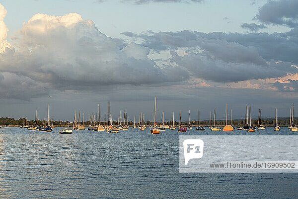 Evening atmosphere  anchored sailboats  Lake Constance  Allensbach  Baden-Württemberg  Germany  Europe