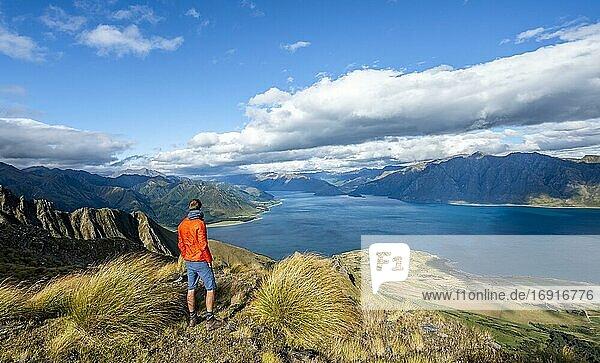 Wanderer blickt in die Ferne  Blick auf Lake Hawea  See und Berglandschaft  Ausblick vom Isthmus Peak  Wanaka  Otago  Südinsel  Neuseeland  Ozeanien