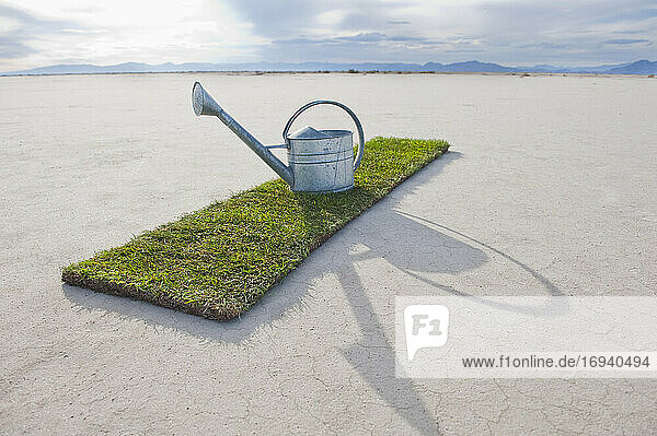 Watering can on turf patch on salt flat.