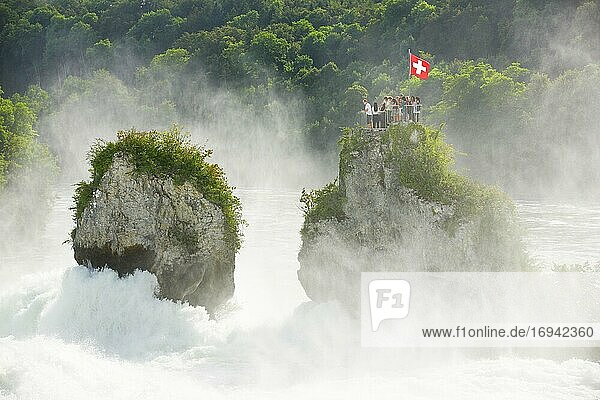 Rheinfall Felsen  Schweiz  Europa