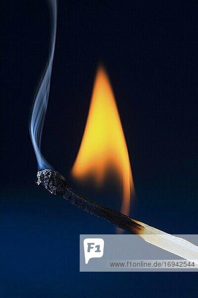 Brennendes Streichholz bildet blauer Rauch  schwarzer Hintergrund  Studio  Schweiz  Europa