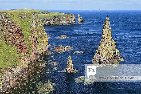 Ostküste Schottland  Großbritannien  Europa