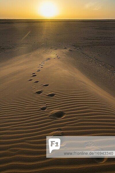 Fußspuren in Sanddüne  Sonnenuntergang  Wüste Sahara  Norden des Tschad