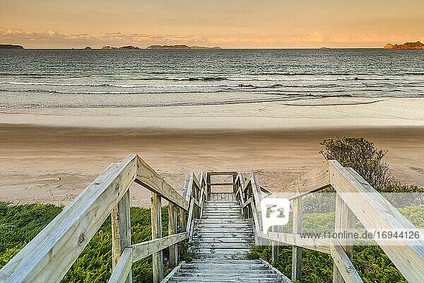 Opito Beach  nahe Whitianga Village  Coromandel Peninsula  Waikato  Nordinsel  Neuseeland  Pazifik