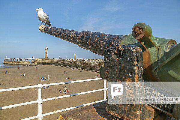 Blick auf die Kanone mit Blick auf Whitby West Pier und Lighthouse  Whitby  Yorkshire  England  Vereinigtes Königreich  Europa