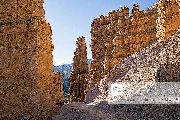 Hohe Klippen  die den Navajo Loop Trail unterhalb des Sunset Point überragen  Bryce Canyon National Park  Utah  Vereinigte Staaten von Amerika  Nordamerika