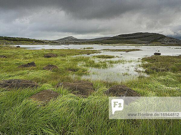 Mullagh More  Burren National Park  Grafschaft Clare  Munster  Republik Irland  Europa