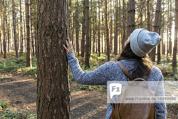 Frau erkundet im Winter den Wald von Cannock Chase