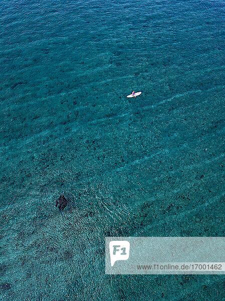 Woman on surfboard near Manta Ray in sea at Maldives