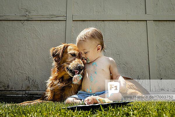 Hemdloser kleiner Junge mit Golden Retriever isst Geburtstagskuchen auf einer Wiese im Hof