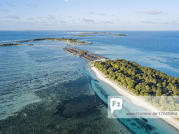 Maldives  Kaafu Atoll  Aerial view of green grove on Huraa island
