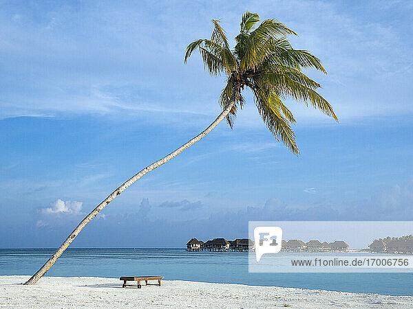 Idyllic beach against blue sky  Bali