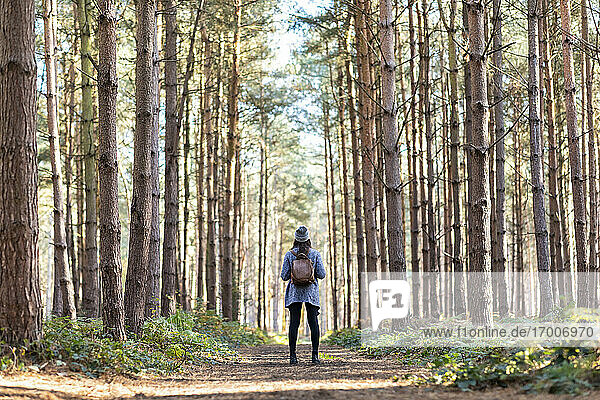 Female explorer with backpack standing in Cannock Chase forest