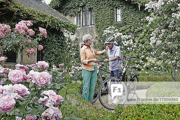 Ein älterer Mann riecht an einer Rosenblüte und steht neben einer Frau in einem Park in Dresden. Deutschland Ein älterer Mann riecht an einer Rosenblüte und steht neben einer Frau in einem Park in Dresden. Deutschland