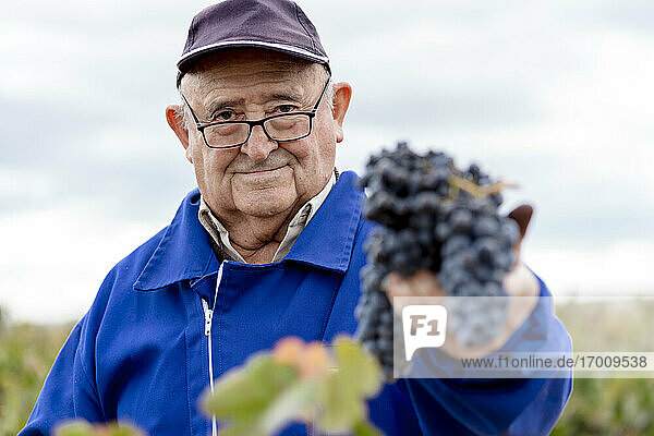 Senior man with bunch of black grapes against sky Senior man with bunch of black grapes against sky