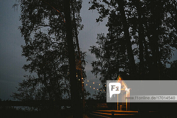 Illuminated lights hanging on tree by cottage seen during sunset