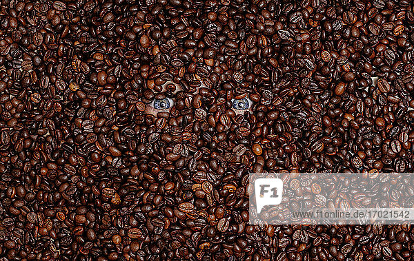 Human eyes buried in roasted coffee beans