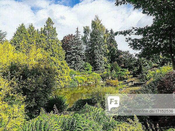 Kubota Garden ist ein 81.000 m? großer japanischer Garten im Stadtteil Rainier Beach von Seattle  Washington. Zu den Hauptmerkmalen des Kubota-Gartens gehören die Kubota-Terrasse  der Bambushain  die Teichkette  der Berghang und der Tom Kubota-Spaziergarten.