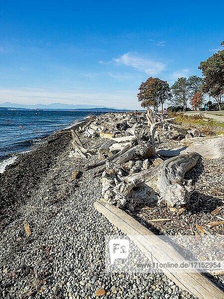 Lincoln Park ist ein 135 Hektar (0 55 km2) großer Park in West Seattle zwischen Fauntleroy Way S. W. und Puget Sound. Er ist einer der größten Parks in Seattle und bietet unter anderem einen gepflasterten Weg entlang des Strandes  Tennisplätze  Baseballfelder  Picknickunterstände und im Sommer ein beheiztes Salzwasserschwimmbad. Der Park ist leicht mit dem Auto  dem Boot oder dem Bus zu erreichen und liegt direkt neben dem Fauntleroy-Terminal der Washington State Ferries.