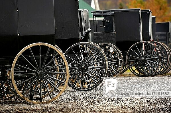 Amish covered buggy transportation wagons parked at a market Sugarcreek and Millersburg Ohio OH.
