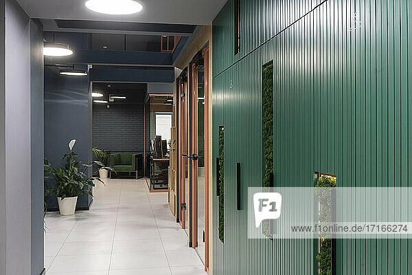 Korridor mit Topfpflanze am Arbeitsplatz Korridor mit Topfpflanze am Arbeitsplatz