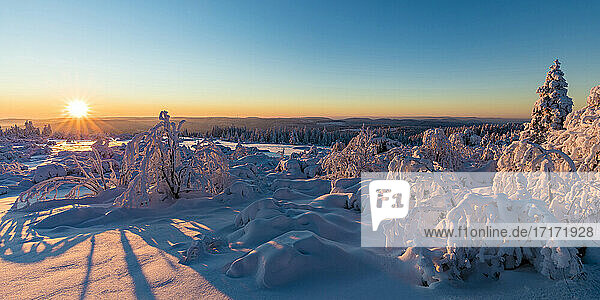Germany  Baden Wurttemberg  Black Forest at sunrise in winter
