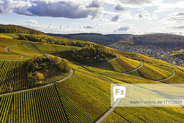 Germany  Baden-Wuerttemberg  Weinstadt  Aerial view of vineyards and hills on autumn day