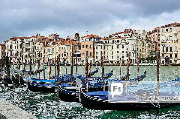 Stadtansicht von Venedig mit Gondeln und Canale Grande im Vordergrund  Blick vom Punta della Dogana  Venetien  Italien  cityscape of Venice with gondolas and Canale Grande in front  view from Punta della Dogana  Veneto  Italy 