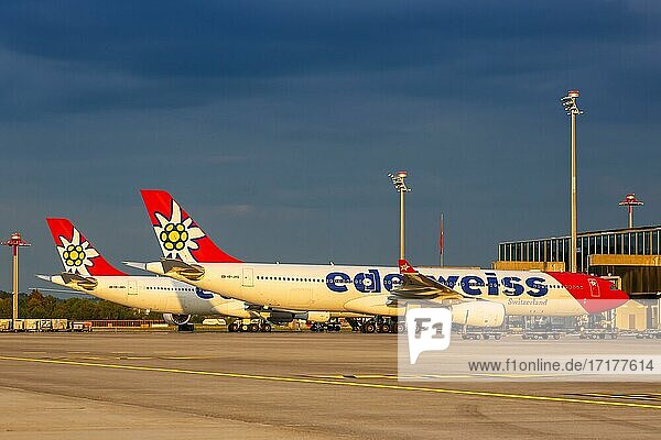 Airbus A330-300 Flugzeuge der Edelweiss auf dem Flughafen Zürich  Schweiz  Europa