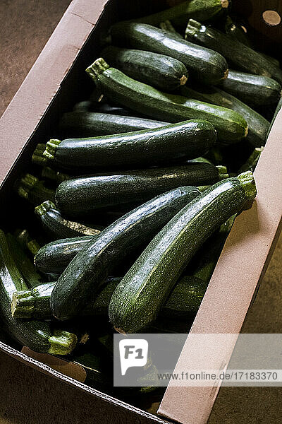 High angle close up of box of freshly picked courgettes.
