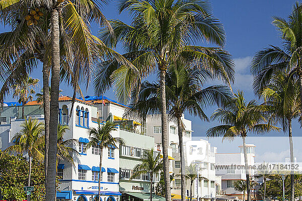 Colourful hotel facades and towering palm trees  Ocean Drive  Art Deco Historic District  South Beach  Miami Beach  Florida  United States of America  North America