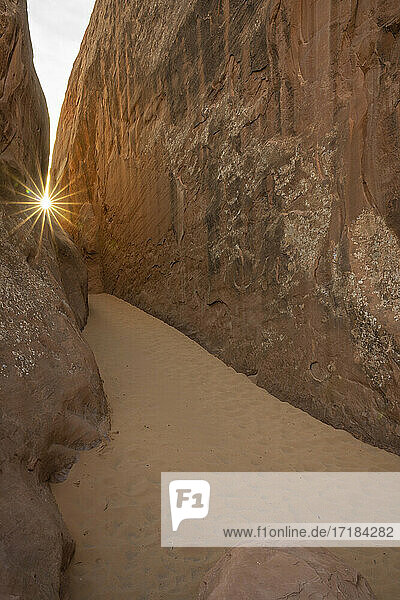 Sunburst over a sandy dune  Arches National Park  Utah  United States of America  North America