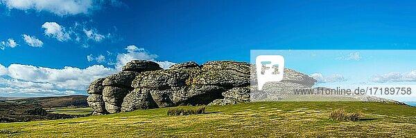 Panorama  Felsen und Wiesen in Haytor Rocks  Dartmoor National Park  Devon  England  Vereinigtes Königreich